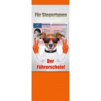 "Banner-Display (""Für Siegertypen!"")"